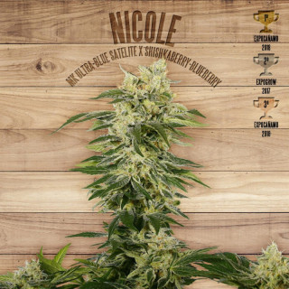Nicole the plant organic seeds