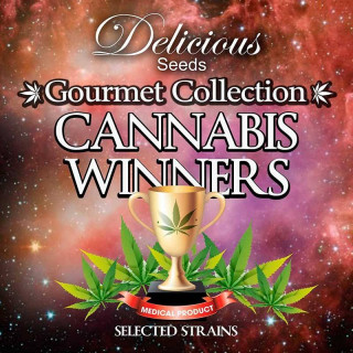 Gourmet collection cannabis winner strains 2
